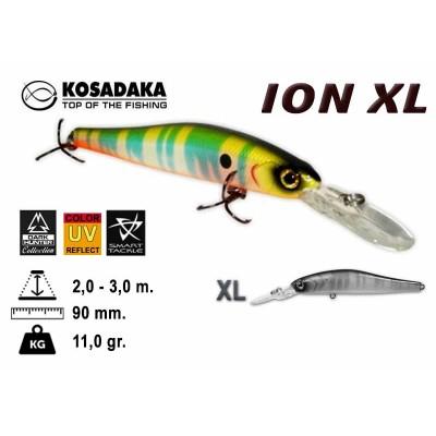 ION XL