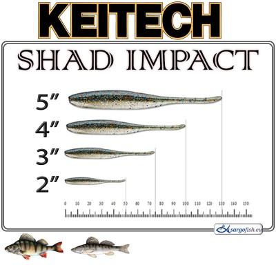 SHAD IMPACT